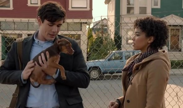a-dog-s-way-home-reviews-rotten-tomatoes-rating-score-1684099